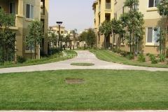 Bomanite Concealed Grasscrete Concrete